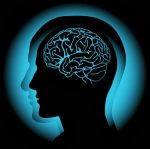Brain-300x298