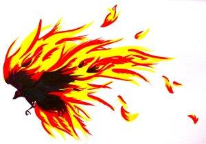 Fire Raven. LucyLooStudios.